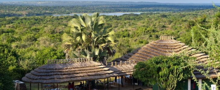 Factors to Consider When Choosing The Perfect Safari Lodge In Uganda